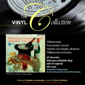 The Vinyl Collection Vol.1
